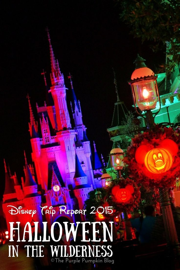 Best Disney World Trip Reports Images On   Disney
