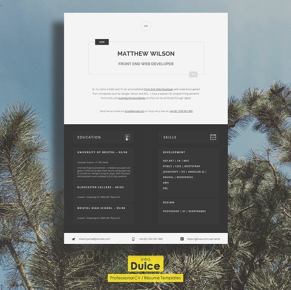 This CV Template has been specifically designed for Web Developers and Technical folk. It's clean and professional look will help Tech Graduates break into the industry or experienced development folk highlight their important skills.