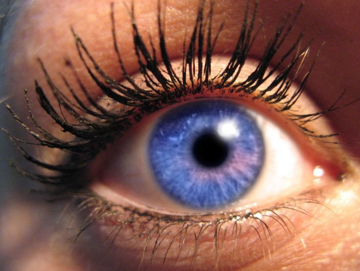 Rare Eye Color | Eye Colors Common and Uncommon Types1 ...