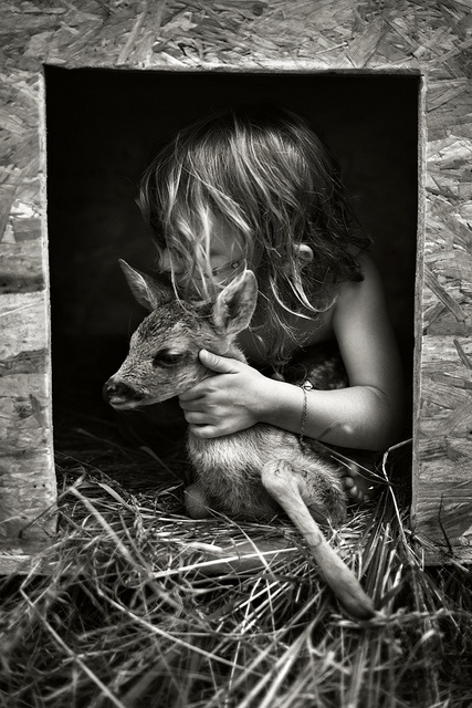 """Little Girl with Fawn:  """"Tender Loving Care.""""  (Photo By: Alain Laboile.)"""
