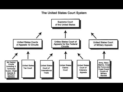 The basic    structure    of courts in the United States      Common       Law      State court  Supreme court
