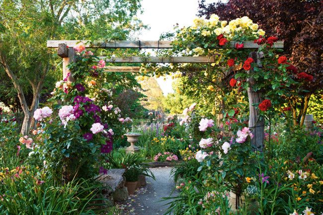 In the Adelaide hills lies a vibrant garden bursting with masses of flowers that thrive in a challenging climate. Chinese Elm and Prunus Nigra trees flank an arbour covered with Dublin Bay, God Buny and orange Westerland roses. Country Style, photography Claire Takacs
