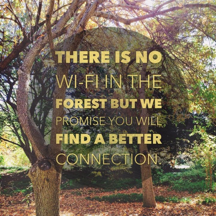 Best Nature Quotes: 671 Best Images About Outdoor Quotes & Words On Pinterest