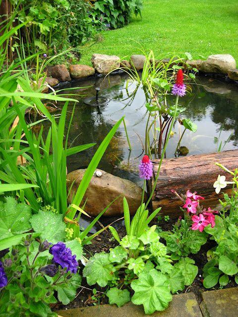 beautiful little backyard pond