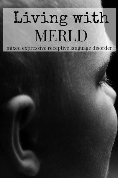 The Transplanted Southerner: Living with MERLD (Mixed Expressive Receptive Language Disorder) Pt 1