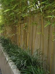 Bildergebnis für bambusstäbe deko