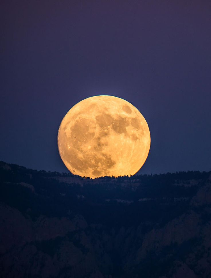 Inspirational Skywatchers Shoot Stunning uSupermoon u Photos Nov via topupyourtrip This month us full moon came the closest to Earth that it us been since