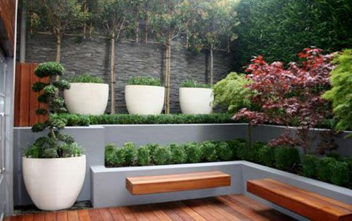 Floating timber seats, terraced garden and white pots with mondo grass / liriope.  Plenty of interest and texture in a small space.