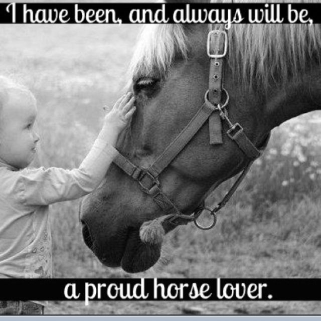 a sweet, handsome little chestnut thoroughbred with a big heart and a beautiful, brave, & strong grey mare will always hold the most special of places in my heart <3