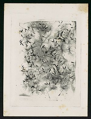 William Henry Fox Talbot: [Dandelion Seeds] (2004.111) | Heilbrunn Timeline of Art History | The Metropolitan Museum of Art
