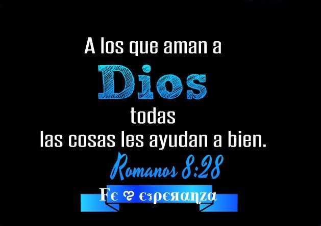 Versiculos De La Biblia De Animo: 1113 Best Images About Versículos Bíblicos On Pinterest