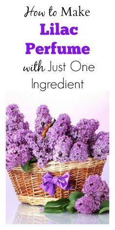 How to Make Lilac Perfume with Just One Ingredient
