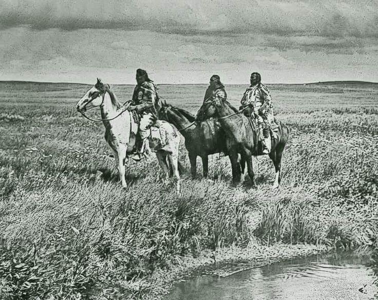 M s de 20 ideas incre bles sobre caballos nativos - Fogli da colorare nativo americano ...