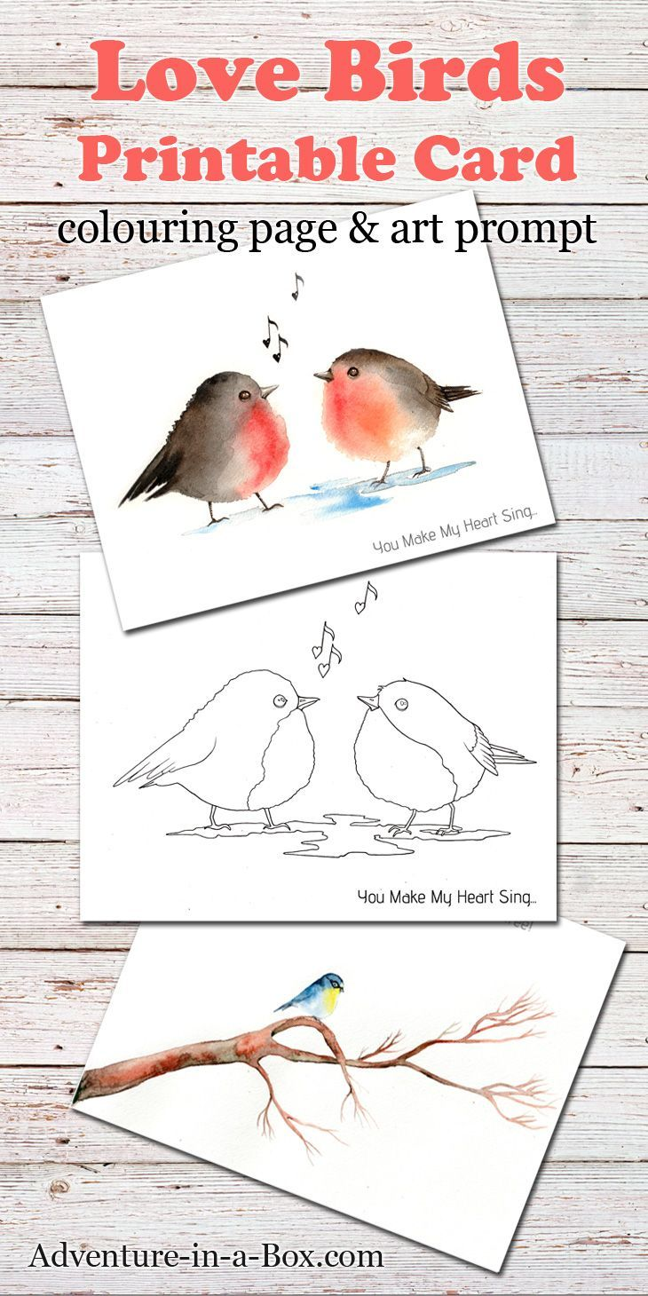 Love Birds: a free printable card + a colouring page + a drawing prompt. A fun little gift that doubles as a craft for Valentine's Day or all year round if you like birds!