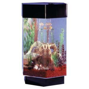 Terrific Saltwater Aquarium Christmas Gifts: Hexagon & Bowfront Aquarium Kits
