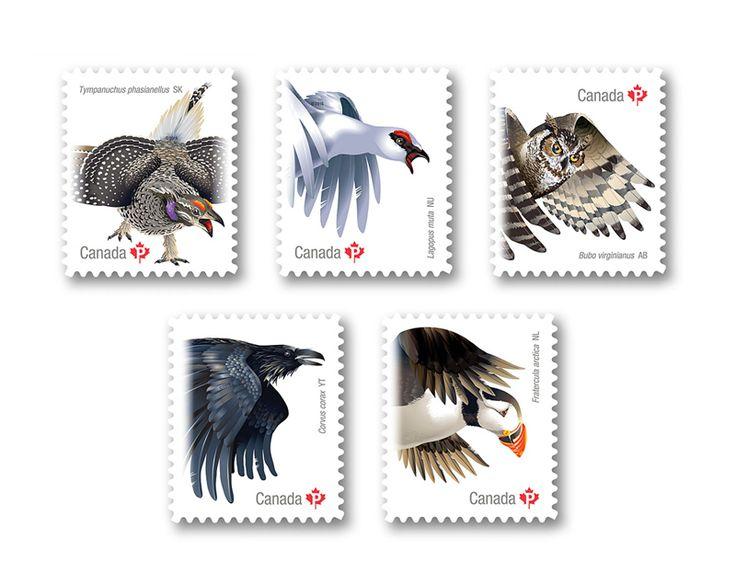 COLLECTORZPEDIA Birds of Canada