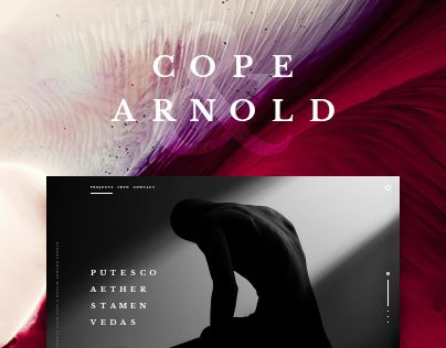 "Check out new work on my @Behance portfolio: ""Cope & Arnold - website"" http://be.net/gallery/33449075/Cope-Arnold-website"