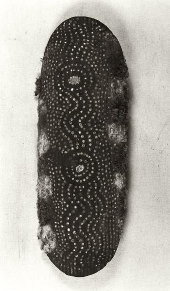 Shield alkulta yalka with symbols of the yalka-Totem, Walpiri, Urkaranana, prior to 1912.  Shield alkulta yalka with symbols of the yalka-Totem; Bean tree wood (Erythrina Vespertilio), chalk, ocres, down; Walpiri, Urkaranana, prior to 1912; l 73 cm, w 25 cm; Coll. Liebler.  Photo: U. Didoni