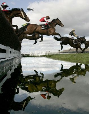 On course at Aintree...