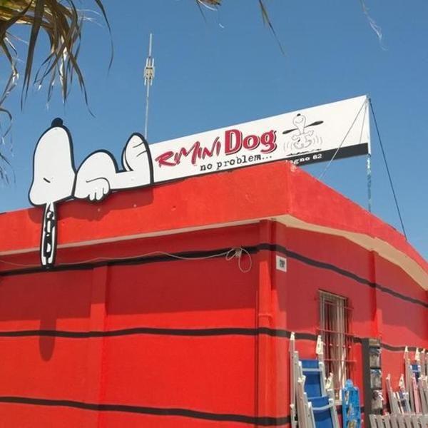38 best rimini dog no problem images on pinterest for Bagno 78 rimini