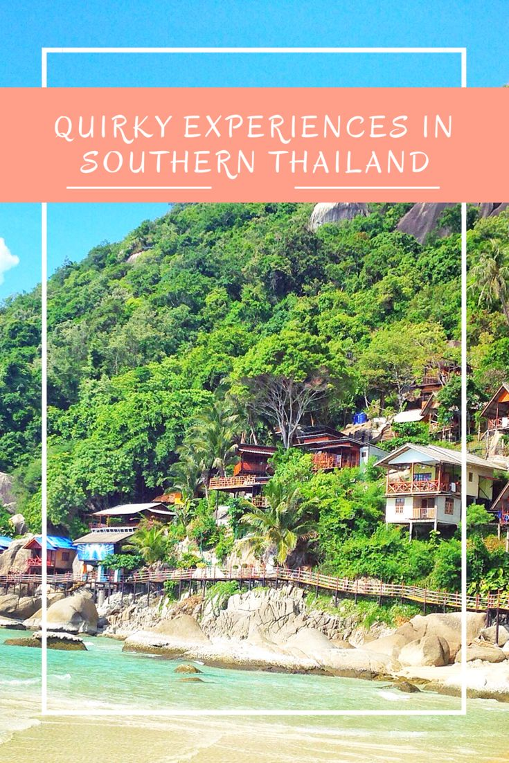 Looking to escape the typical backpacker trail in Southern Thailand? Check out these unique- and sometimes quirky- experiences!