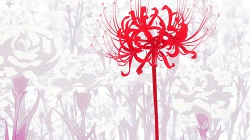 tokyo ghoul - red flowers blooming