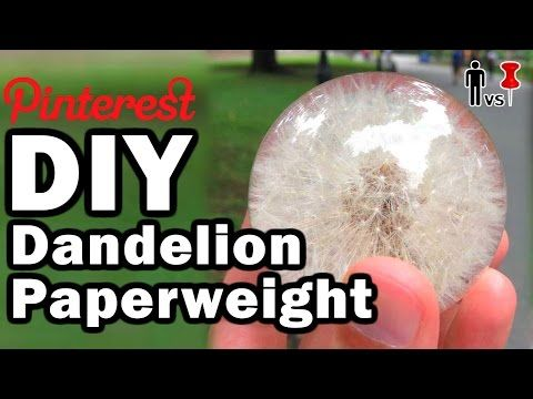 DIY Dandelion Paperweight - Man Vs Pin - Pinterest Test
