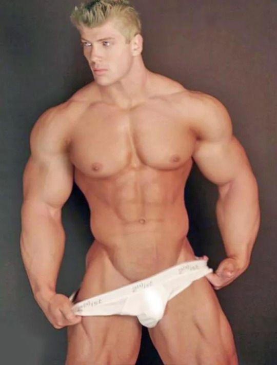 fitte porn gayporno