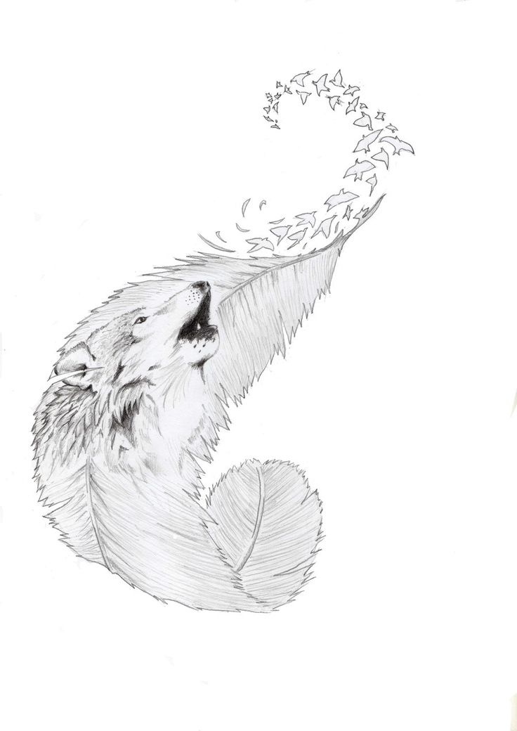 I like the curvature of this feather and LOVE the birds flying off in a swirl.  wolf Tatto comission by Jose0710.deviantart.com