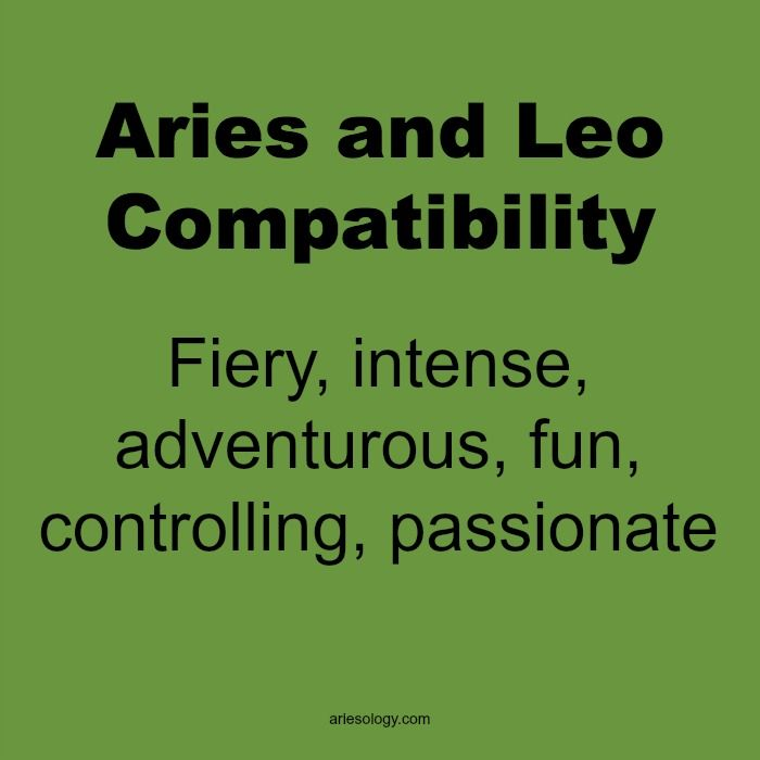 Aries and Leo Love Compatibility – Ariesology