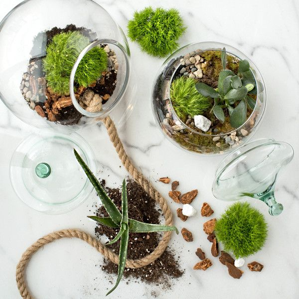 "Create your own indoor ecosystem with this large hanging terrarium kit.Made from 100% recycled glass, this terrarium kit includes charcoal, orchid mix, gravel, terrarium soil, moss, stones, decorative accents and building and care instructions - everything needed to grow your own indoor garden that ""thrives on neglect"". Gift for her. Housewarming Gift. Birthday gift. Kit gift."