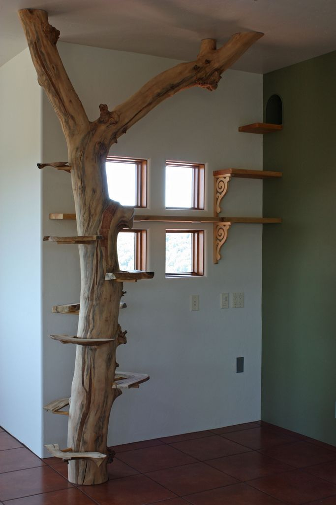 A perfect cat tree with access to Cat TV a kitty super highway :)