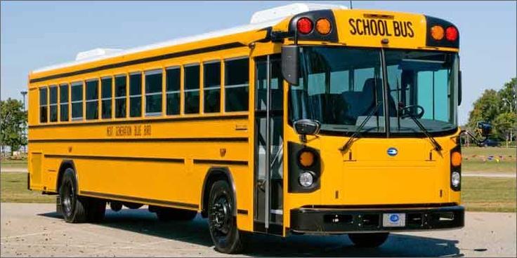 Blue Bird's Largest School Bus Distributor School Busses