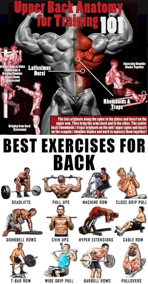 The Ultimate List Of Compound Exercises Weighteasylosscom