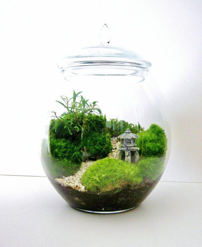 Asian Landscape Moss Terrarium with Miniature Path, Pagoda & Tree in a Large Decorative Glass Jar. $118.00, via Etsy.