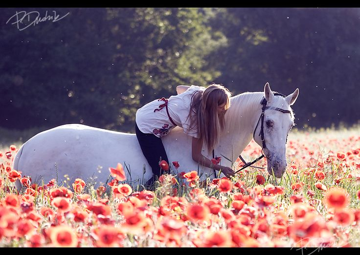 So pretty. Wish I was horse back riding in a field of flowers