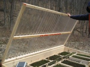 Quick-and-Easy Cold Frame