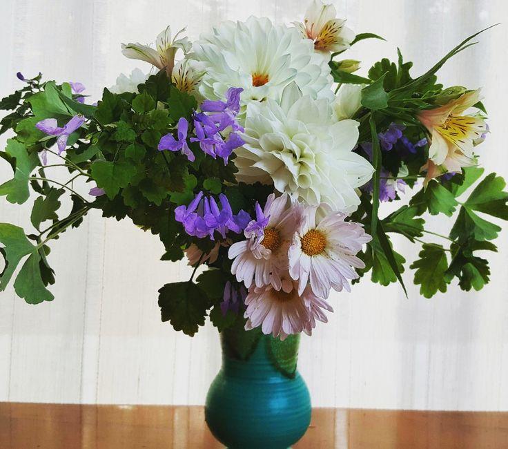 Weekly posy - chrysanthemum, dahlia, astromeria, assorted foliage