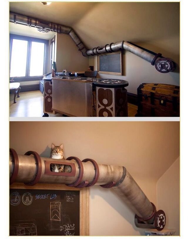 145 best best pet home setups images on pinterest for Diy cat playground