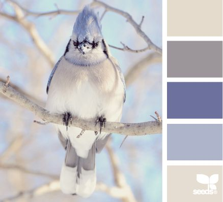 Soft and subtle wedding color palette inspiration in shades of blue and beige based on nature