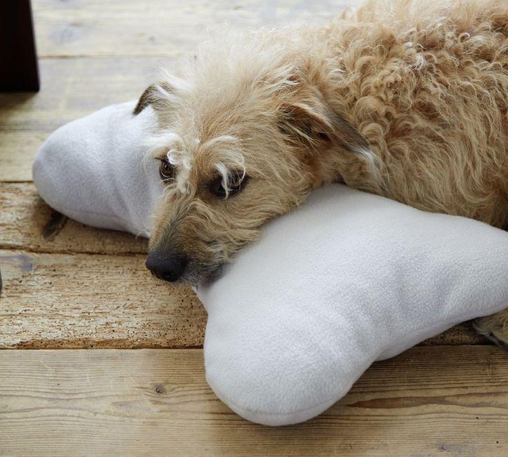 Ein kuscheliges Kissen für Ihren Hund selbermachen? Kein Problem. Hier gibt's die kostenlose Anleitung.