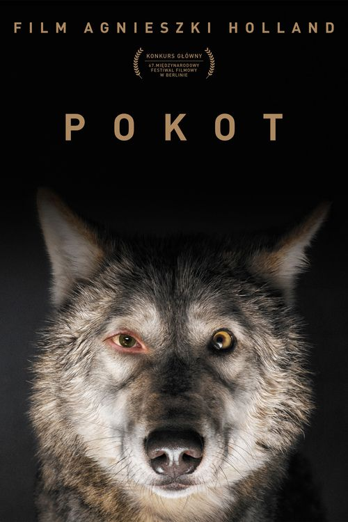 Watch Spoor (2017) Full Movie Online Free