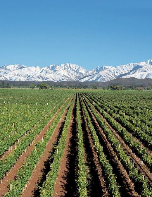 Mendoza, Argentina: