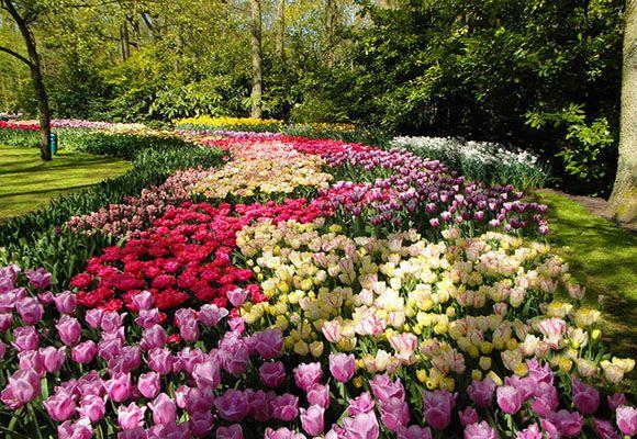Дорогу  весне:  фото на  весеннюю тему | YACENKA