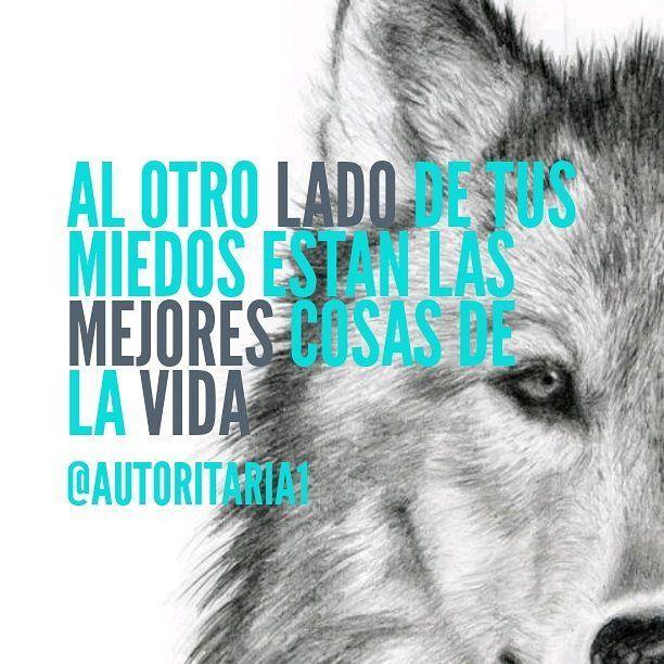 #Imparable #actitud #estilo #autoritariatiendaonline #millonario #frases #motivacion #emprendedores #color #colombia #español #mentalidade #lobo #siempre #l Te esperamos en nuestra Fan Page http://ift.tt/1W5cciq Instagram y Twitter @Autoritaria1 Nuestra Web WWW.AUTORITARIA.COM