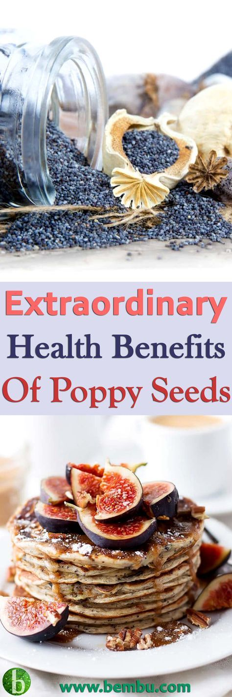Poppy seeds can be found in just about any supermarket or health food store, but if you're interested in trying to harvest and store them yourself, take a look at this little guide… Health Tips │ Health Ideas │Healthy Food │Health │Food │Vitamin │Healing │Natural Remedies │Nutrition │Natural Cure │Herbal Remedies │Natural beauty #Health #Ideas #Tips #Vitamin #Healthyfood #Food #Vitamin #Healing #Remedies #Nutrition #Cure #Herbalremedies #Naturalbeauty