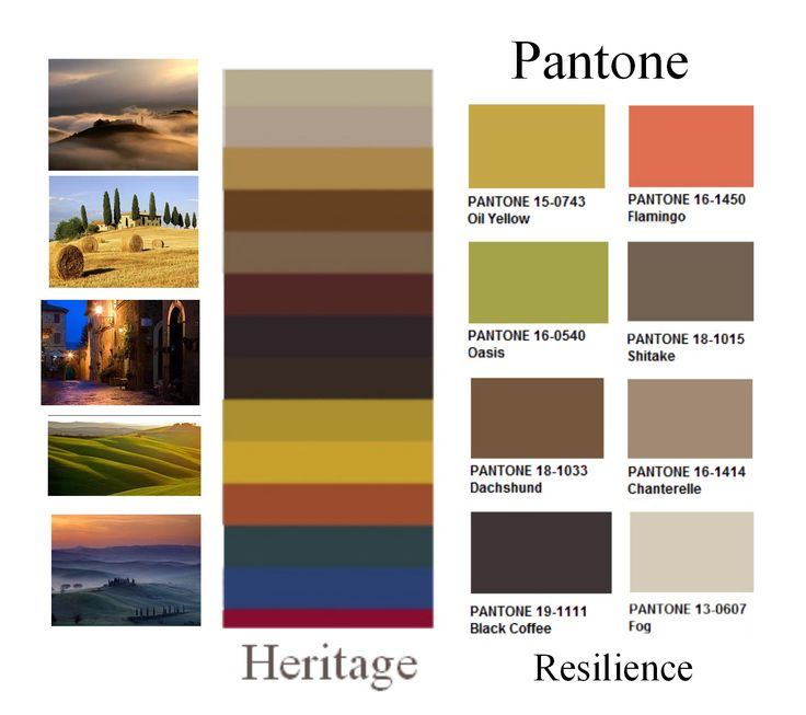 1000 Images About Tuscan Colors On Pinterest Cove