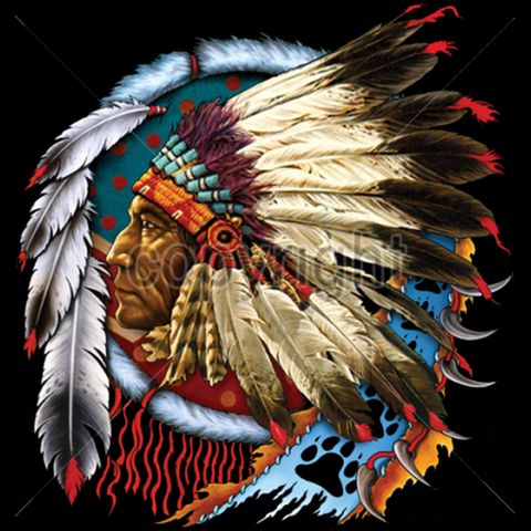 Native American Indian Chief Mens Style T Shirt UNISEX Sizes 5549