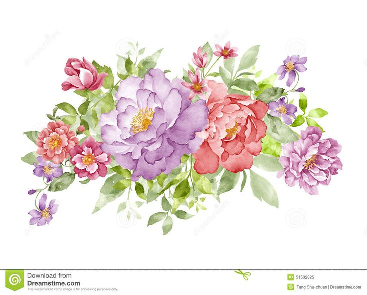 251 best vintage paper flowers on a white background images on photo about watercolor illustration flower set in simple white background 51533377 mightylinksfo Image collections