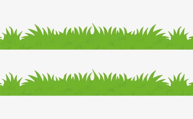 Grass Png Vector Element Png And Vector Leaf Coloring Page Grass Paper Quilling Jewelry